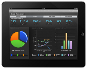 iPad BI Dashboard